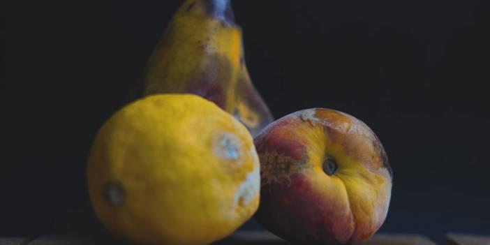 Küf nedir? Küflü yiyecekler ve çürük meyveler zararlı mıdır? İyi ve kötü küfler nelerdir?